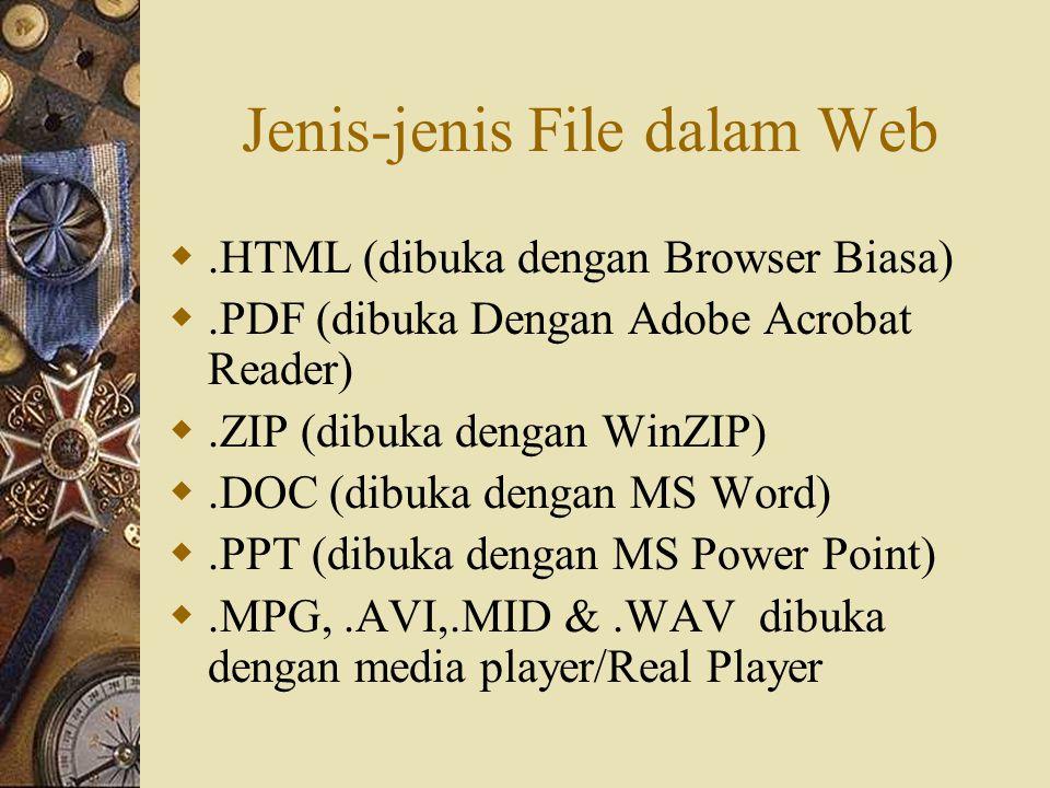 Jenis-jenis File dalam Web