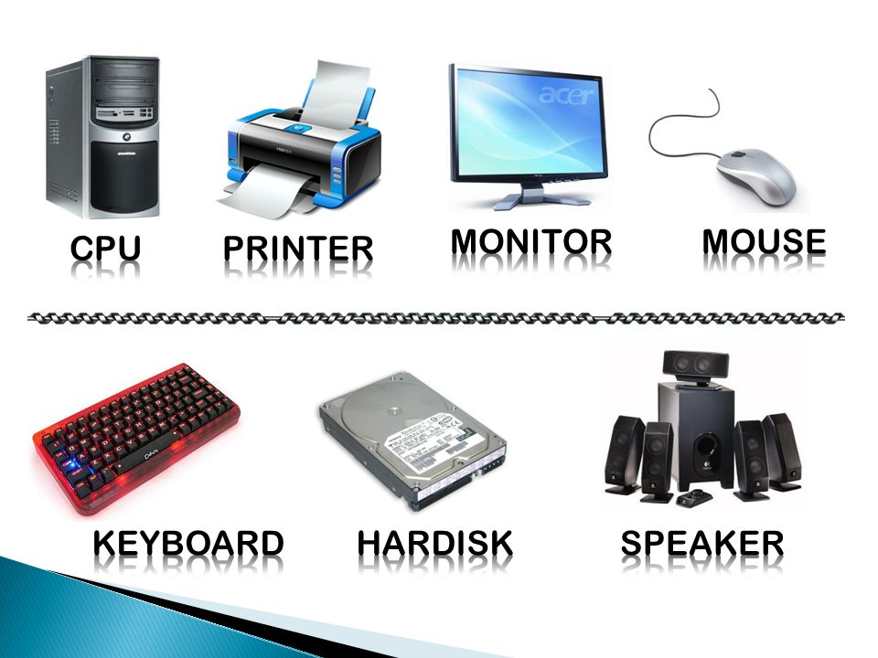 MONITOR MOUSE CPU PRINTER KEYBOARD HARDISK SPEAKER