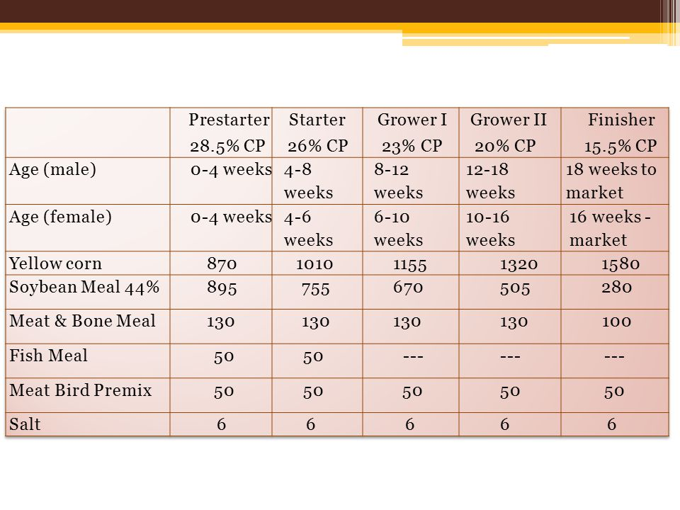 Prestarter 28.5% CP. Starter. 26% CP. Grower I. 23% CP. Grower II. 20% CP. Finisher. 15.5% CP.