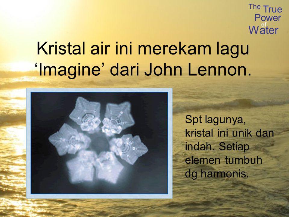 Kristal air ini merekam lagu 'Imagine' dari John Lennon.
