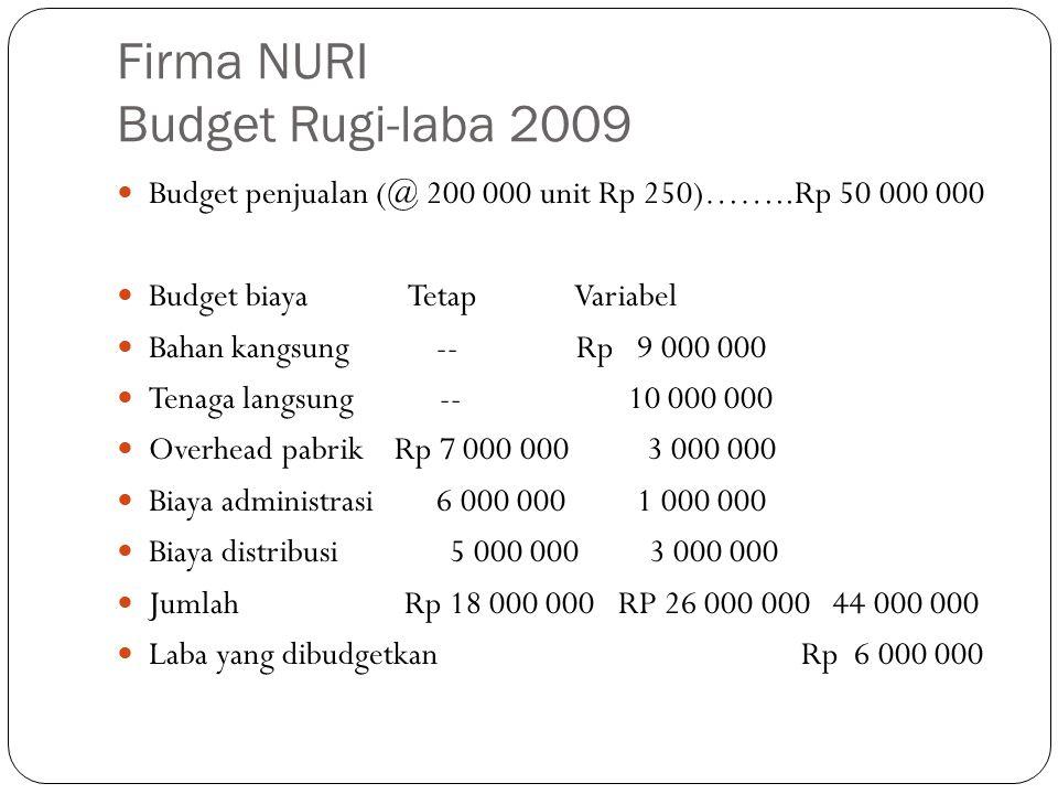 Firma NURI Budget Rugi-laba 2009