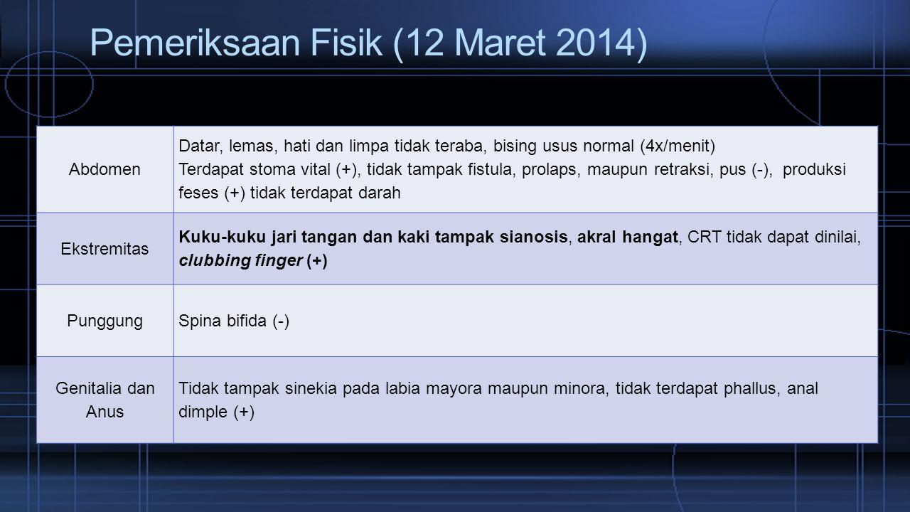 Pemeriksaan Fisik (12 Maret 2014)
