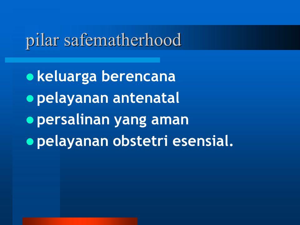 pilar safematherhood keluarga berencana pelayanan antenatal