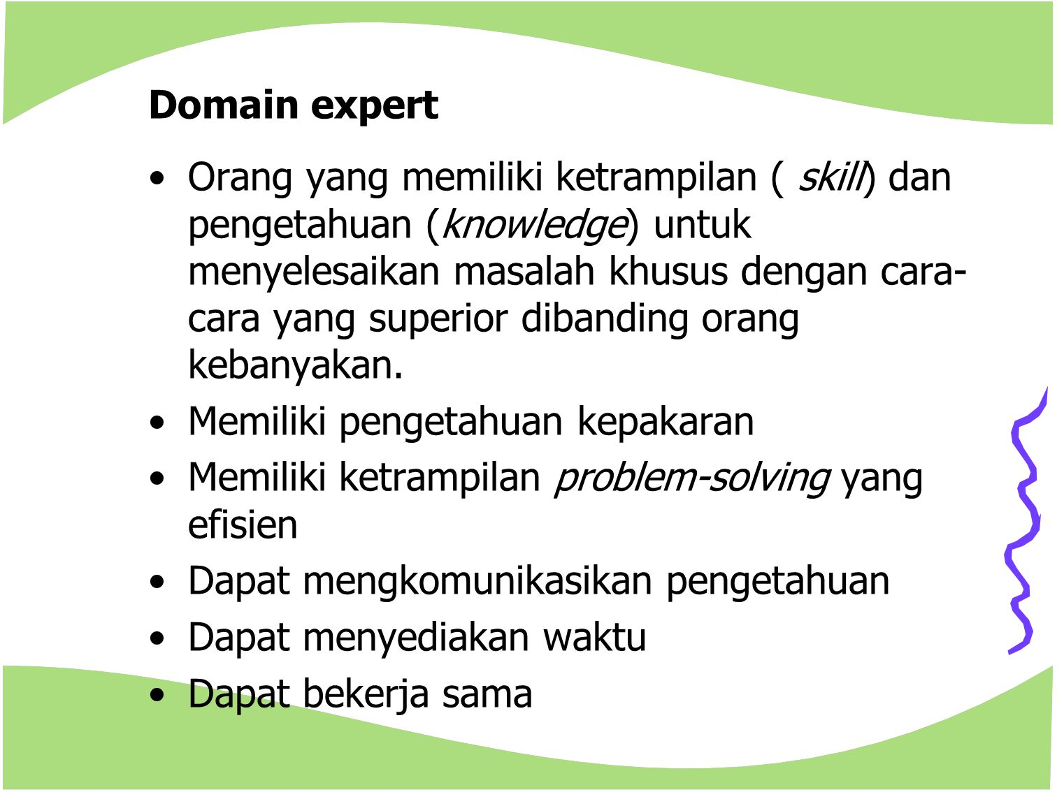 Domain expert