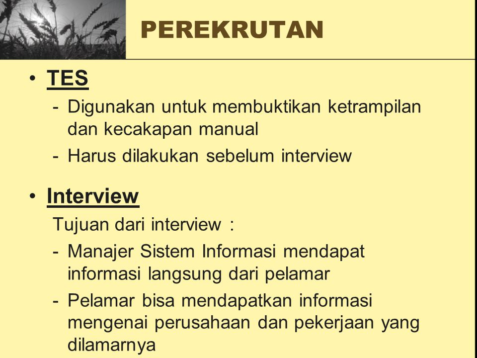 PEREKRUTAN TES Interview