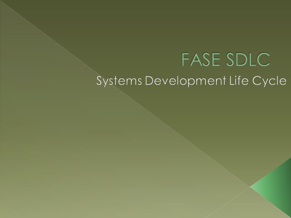 Systems Development Life Cycle