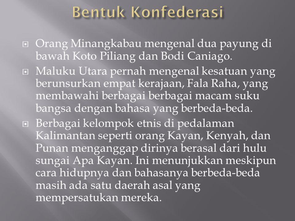 Bentuk Konfederasi Orang Minangkabau mengenal dua payung di bawah Koto Piliang dan Bodi Caniago.