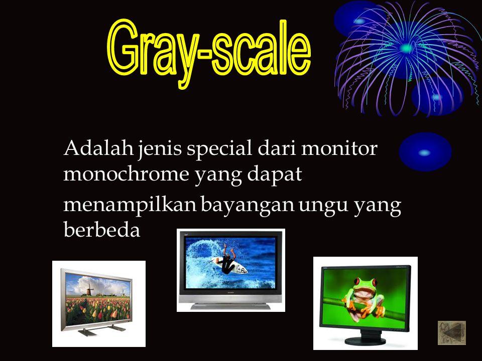 Gray-scale Adalah jenis special dari monitor monochrome yang dapat