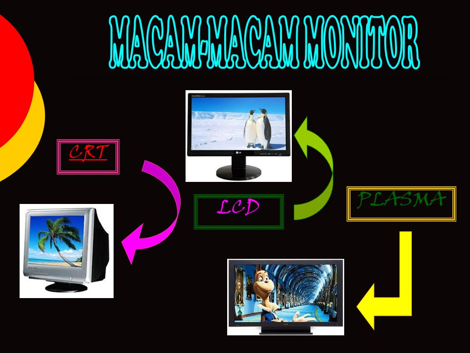 MACAM-MACAM MONITOR CRT PLASMA LCD