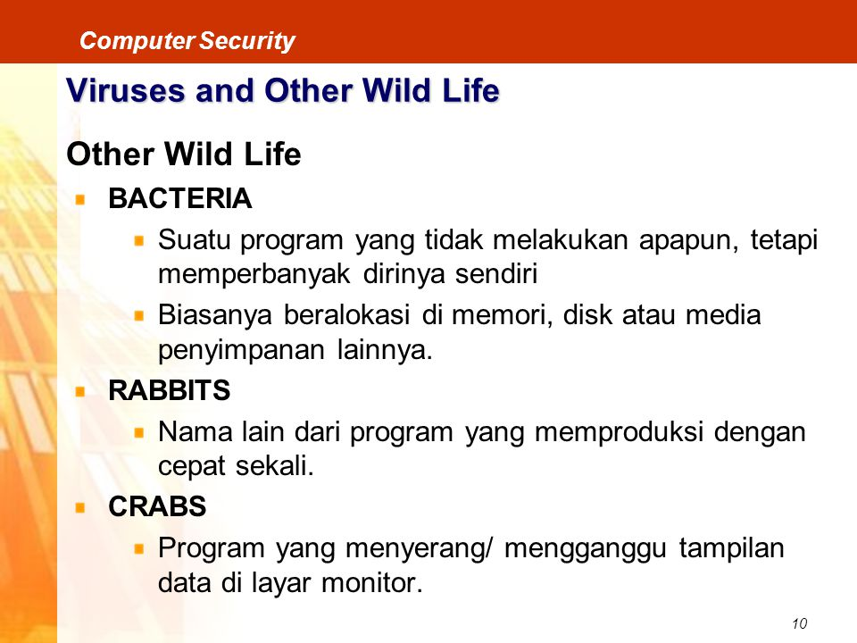 Viruses and Other Wild Life