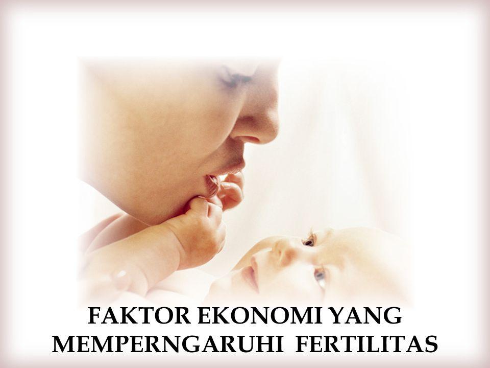 Faktor EKONOMI yang memperngaruhi fertiliTas