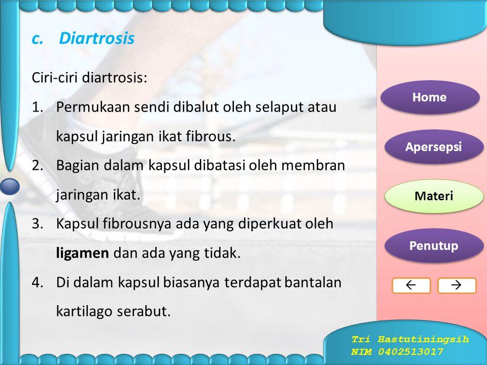 Diartrosis Ciri-ciri diartrosis: