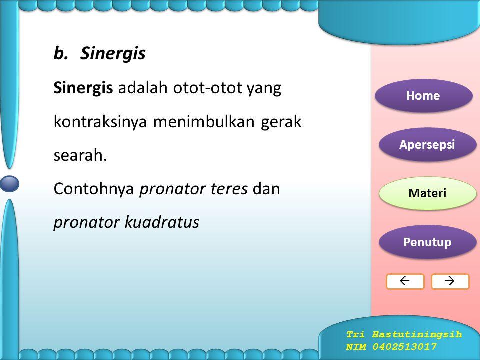 Sinergis Sinergis adalah otot-otot yang kontraksinya menimbulkan gerak searah. Contohnya pronator teres dan pronator kuadratus.