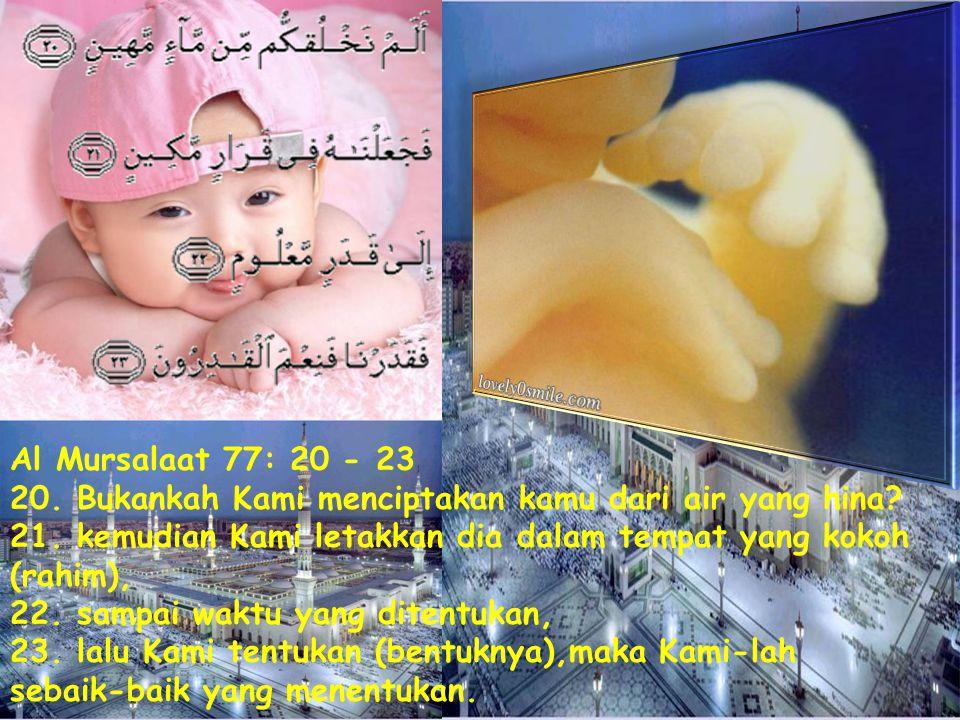 Al Mursalaat 77: 20 - 23