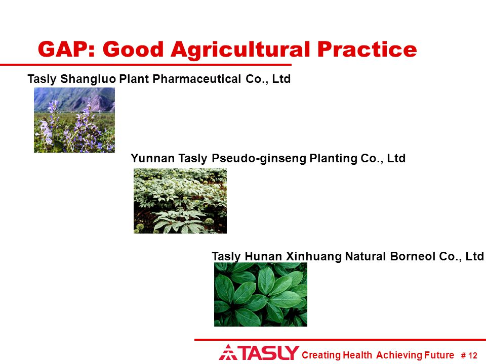 GAP: Good Agricultural Practice