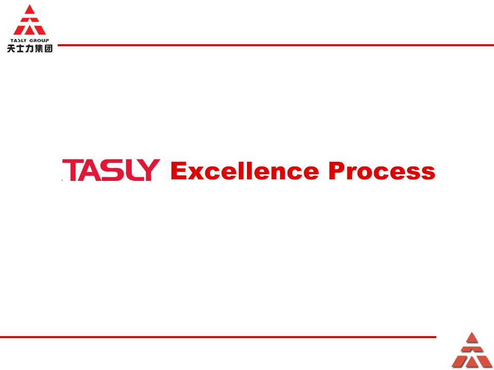 Excellence Process