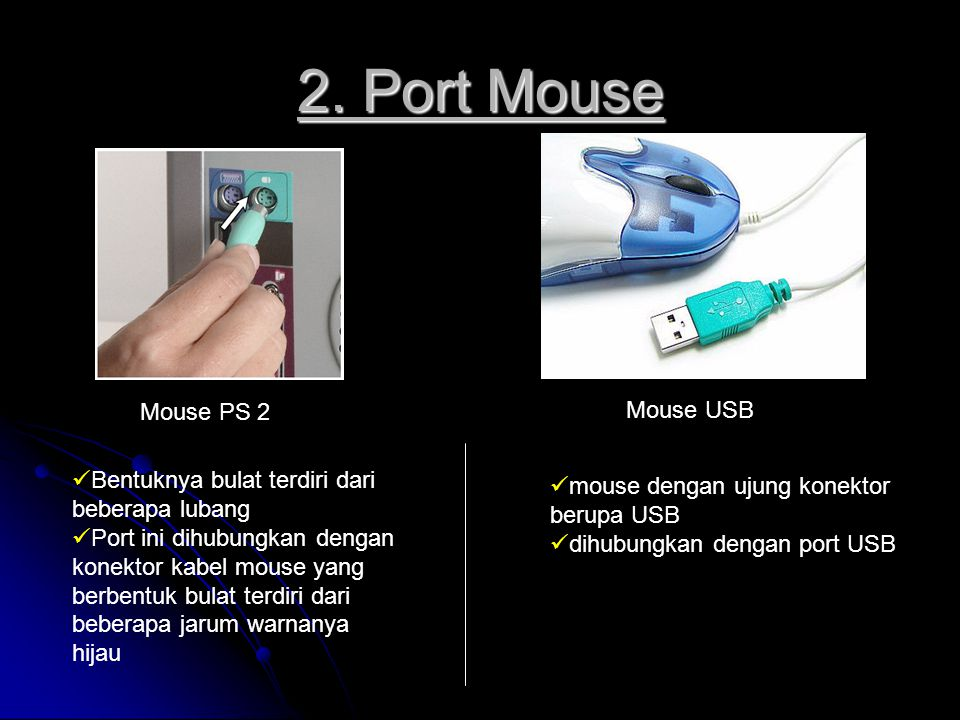 2. Port Mouse Mouse PS 2 Mouse USB