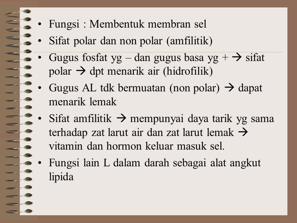 Fungsi : Membentuk membran sel