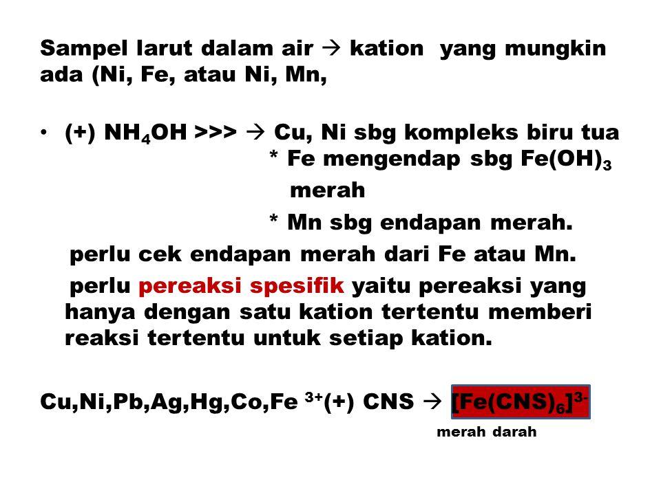 Sampel larut dalam air  kation yang mungkin ada (Ni, Fe, atau Ni, Mn,