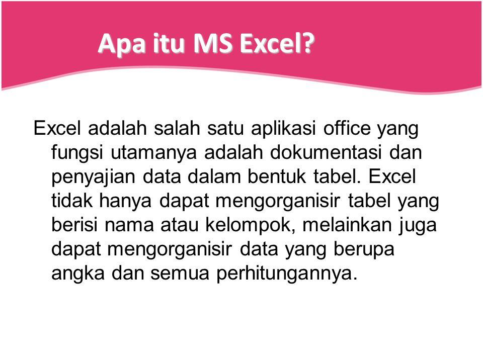 Apa itu MS Excel