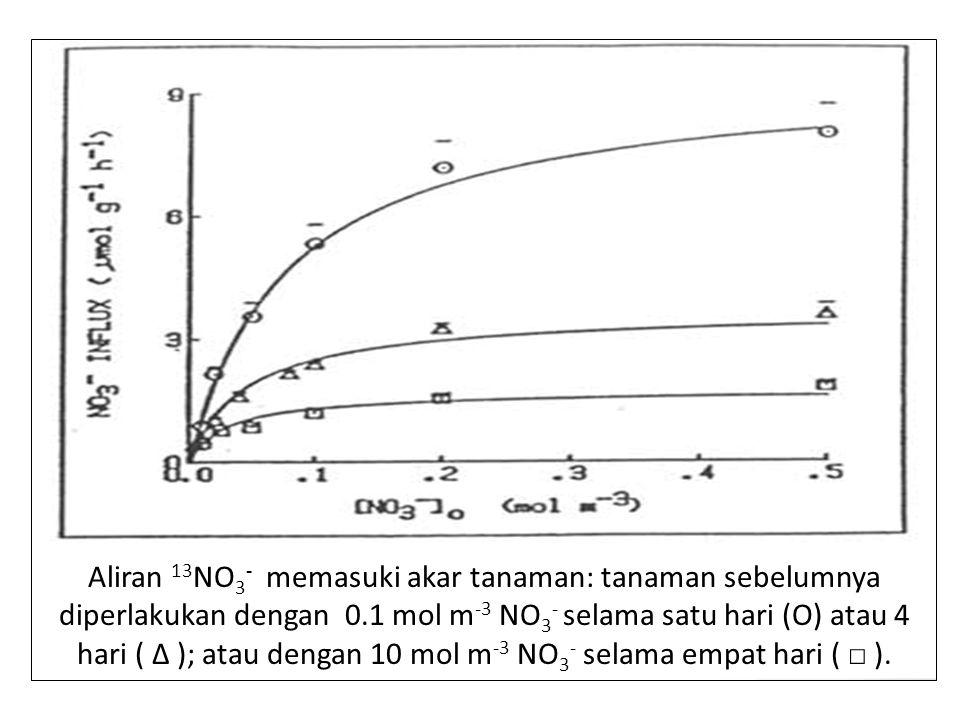 Aliran 13NO3- memasuki akar tanaman: tanaman sebelumnya diperlakukan dengan 0.1 mol m-3 NO3- selama satu hari (O) atau 4 hari ( Δ ); atau dengan 10 mol m-3 NO3- selama empat hari ( □ ).