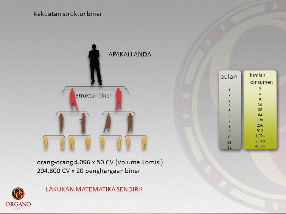Kekuatan struktur biner