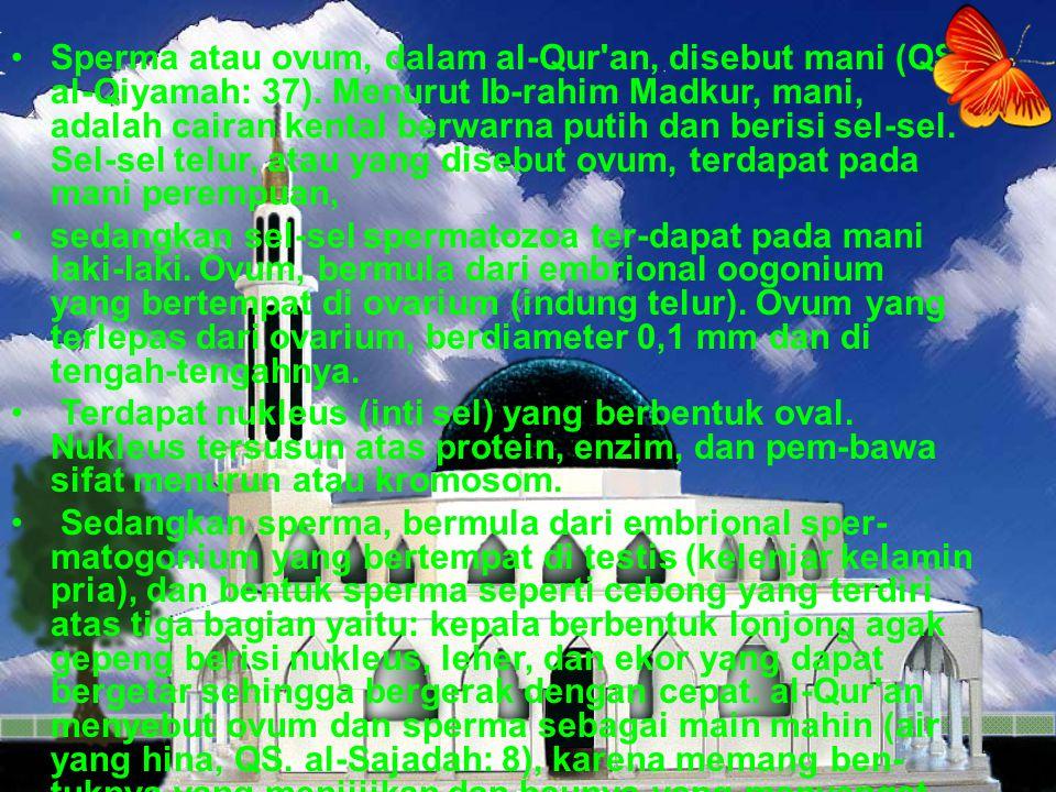 Sperma atau ovum, dalam al-Qur an, disebut mani (QS. al-Qiyamah: 37)
