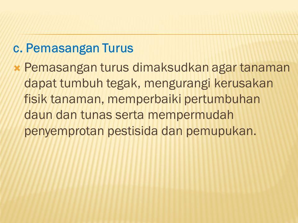c. Pemasangan Turus