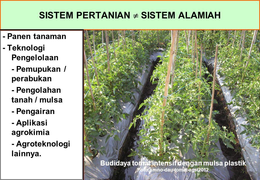SISTEM PERTANIAN  SISTEM ALAMIAH