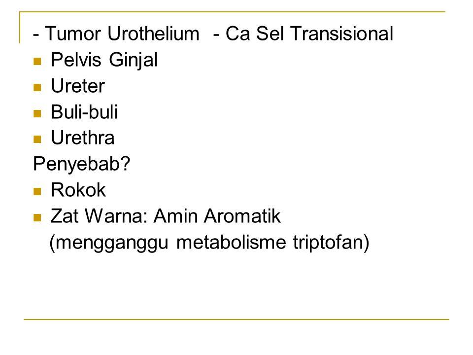 - Tumor Urothelium - Ca Sel Transisional