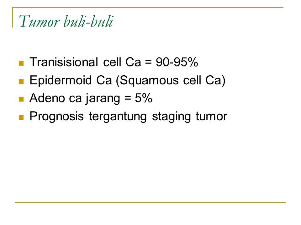 Tumor buli-buli Tranisisional cell Ca = 90-95%