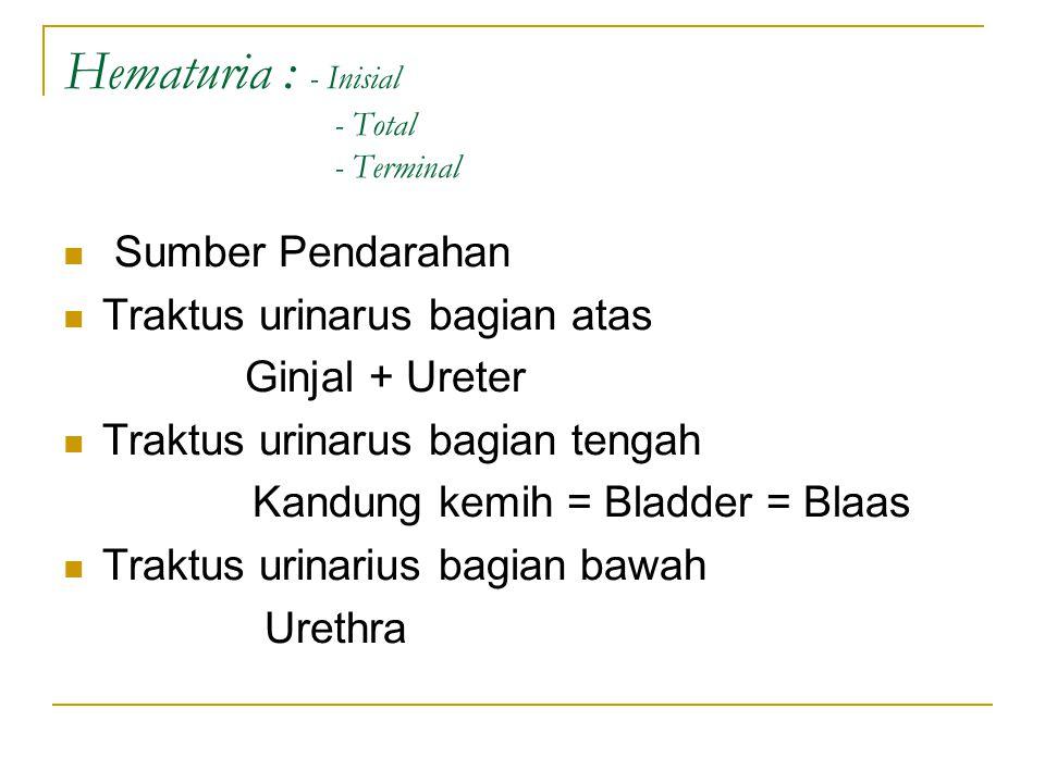 Hematuria : - Inisial - Total - Terminal