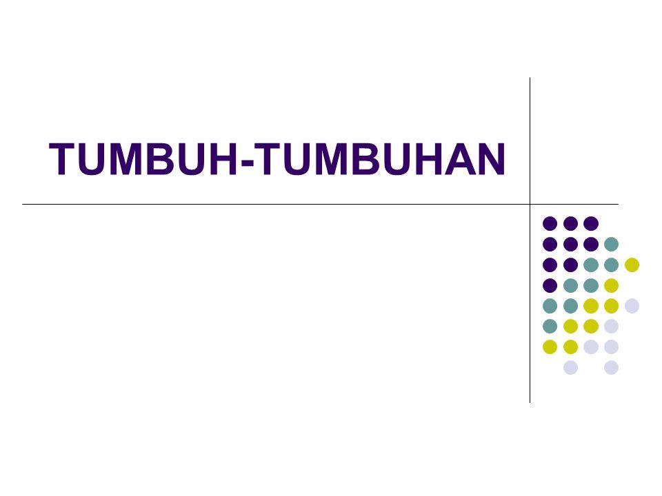 TUMBUH-TUMBUHAN