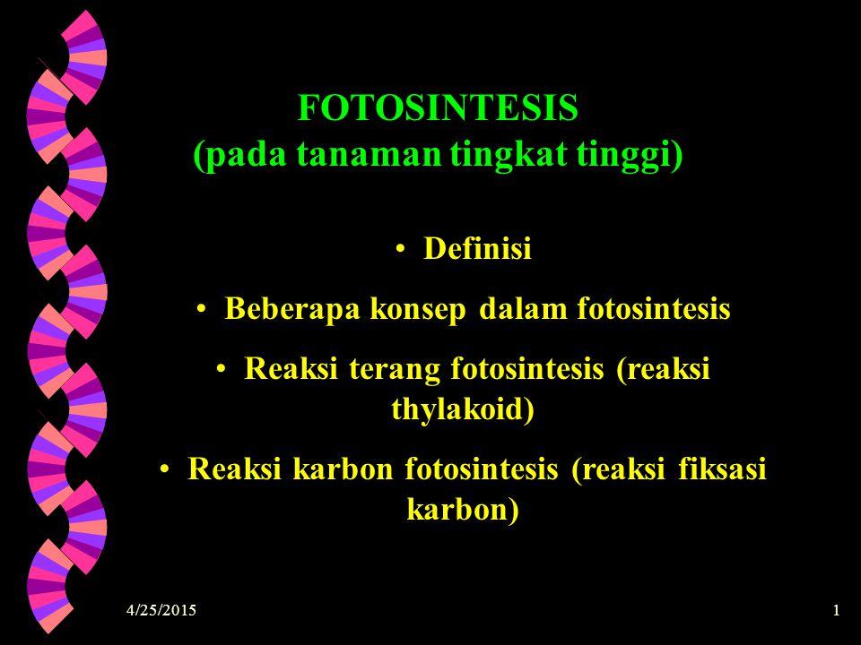 FOTOSINTESIS (pada tanaman tingkat tinggi)