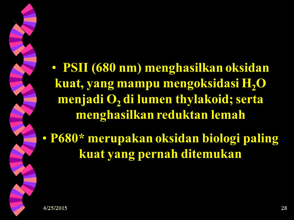 P680* merupakan oksidan biologi paling kuat yang pernah ditemukan
