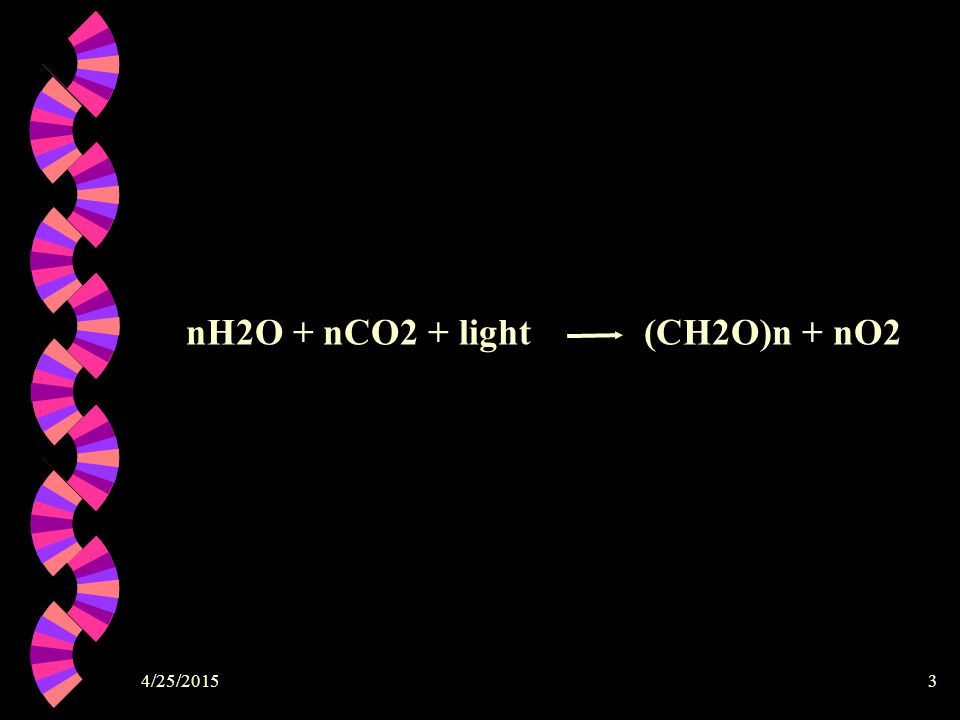 nH2O + nCO2 + light (CH2O)n + nO2