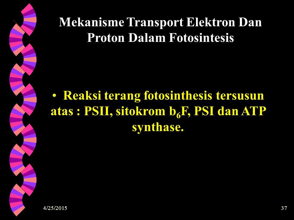 Mekanisme Transport Elektron Dan Proton Dalam Fotosintesis