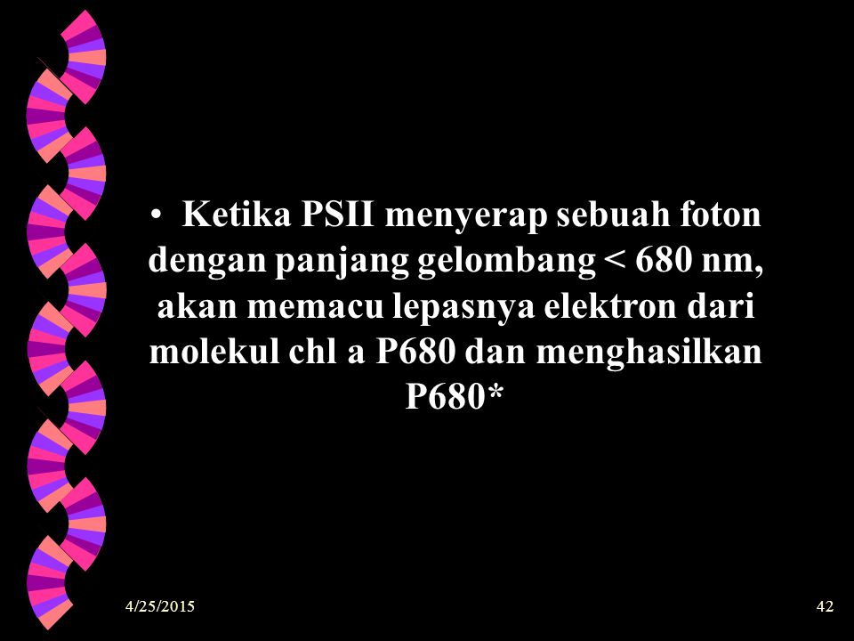Ketika PSII menyerap sebuah foton dengan panjang gelombang < 680 nm, akan memacu lepasnya elektron dari molekul chl a P680 dan menghasilkan P680*