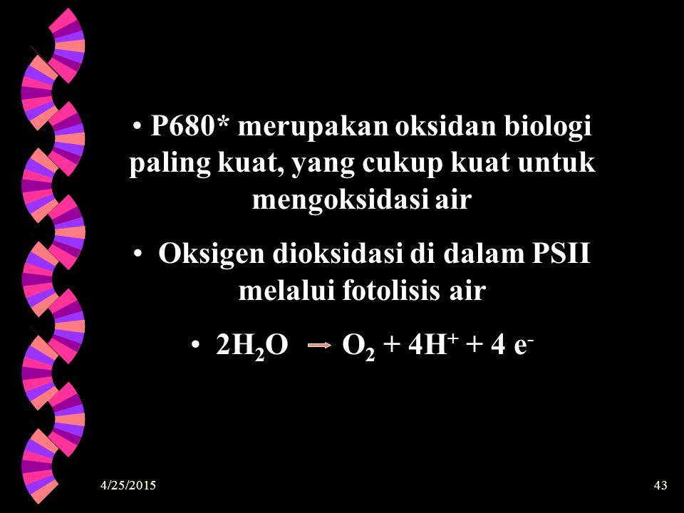 Oksigen dioksidasi di dalam PSII melalui fotolisis air