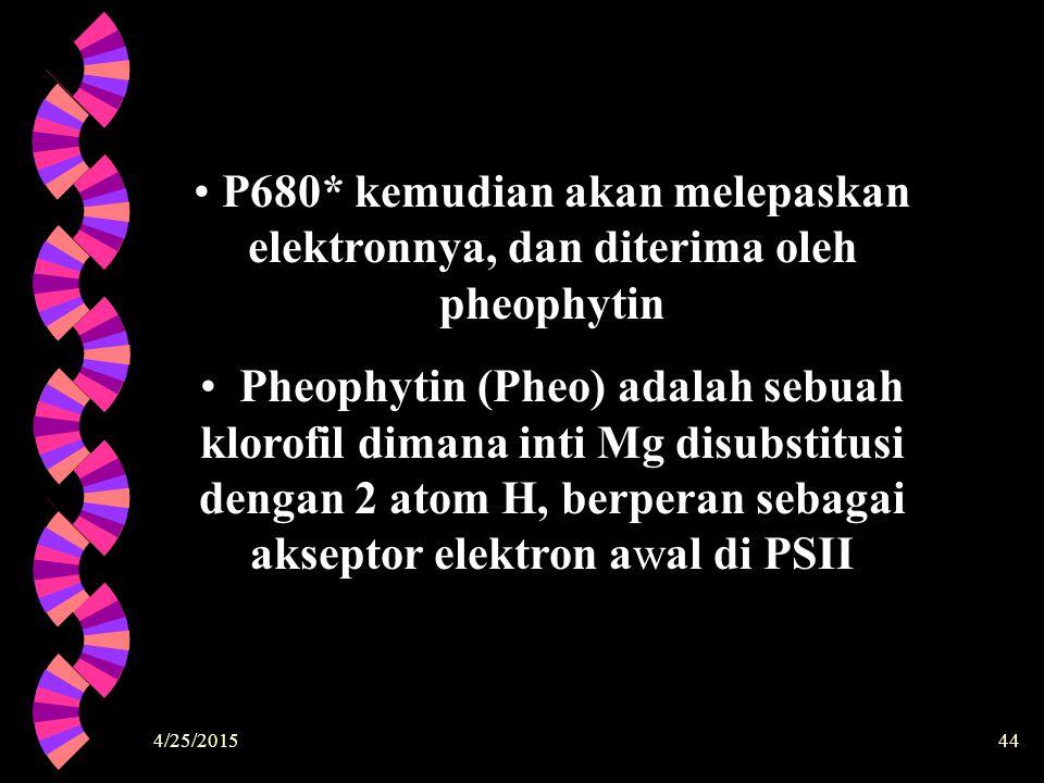 P680* kemudian akan melepaskan elektronnya, dan diterima oleh pheophytin