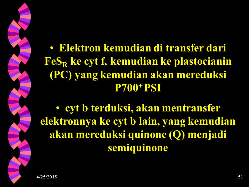 Elektron kemudian di transfer dari FeSR ke cyt f, kemudian ke plastocianin (PC) yang kemudian akan mereduksi P700+ PSI