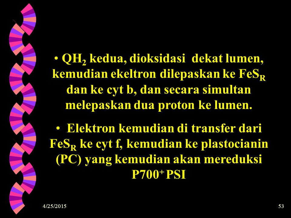 QH2 kedua, dioksidasi dekat lumen, kemudian ekeltron dilepaskan ke FeSR dan ke cyt b, dan secara simultan melepaskan dua proton ke lumen.