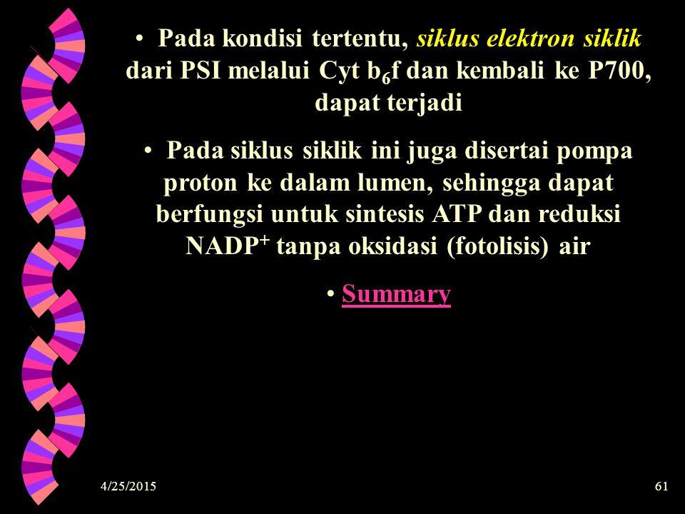 Pada kondisi tertentu, siklus elektron siklik dari PSI melalui Cyt b6f dan kembali ke P700, dapat terjadi