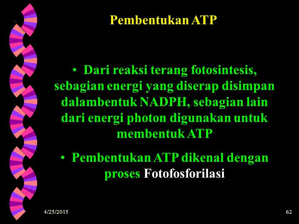 Pembentukan ATP dikenal dengan proses Fotofosforilasi