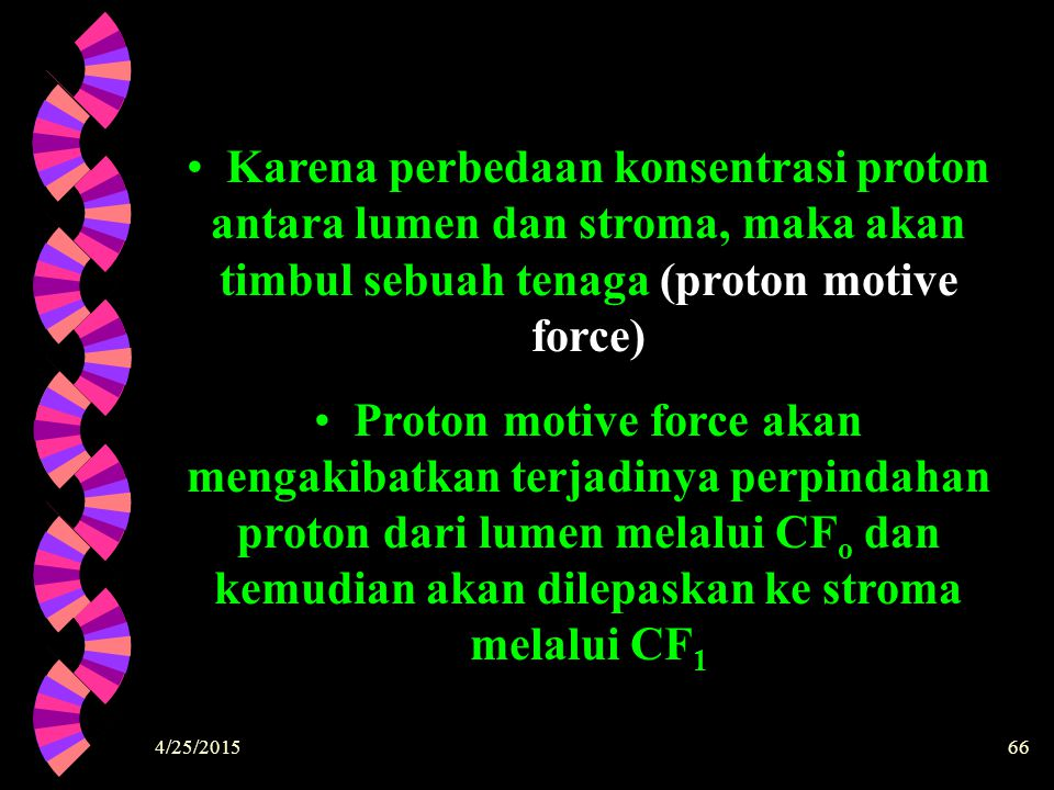 Karena perbedaan konsentrasi proton antara lumen dan stroma, maka akan timbul sebuah tenaga (proton motive force)