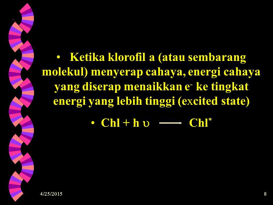 Ketika klorofil a (atau sembarang molekul) menyerap cahaya, energi cahaya yang diserap menaikkan e- ke tingkat energi yang lebih tinggi (excited state)