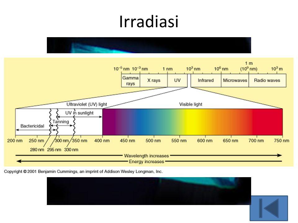 Irradiasi