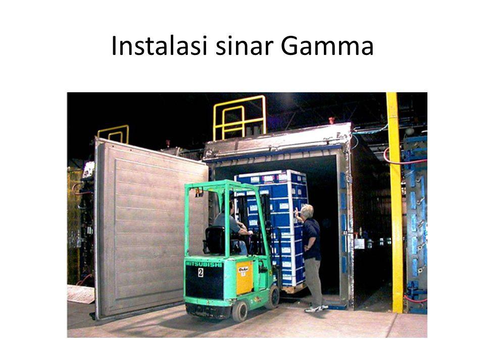 Instalasi sinar Gamma