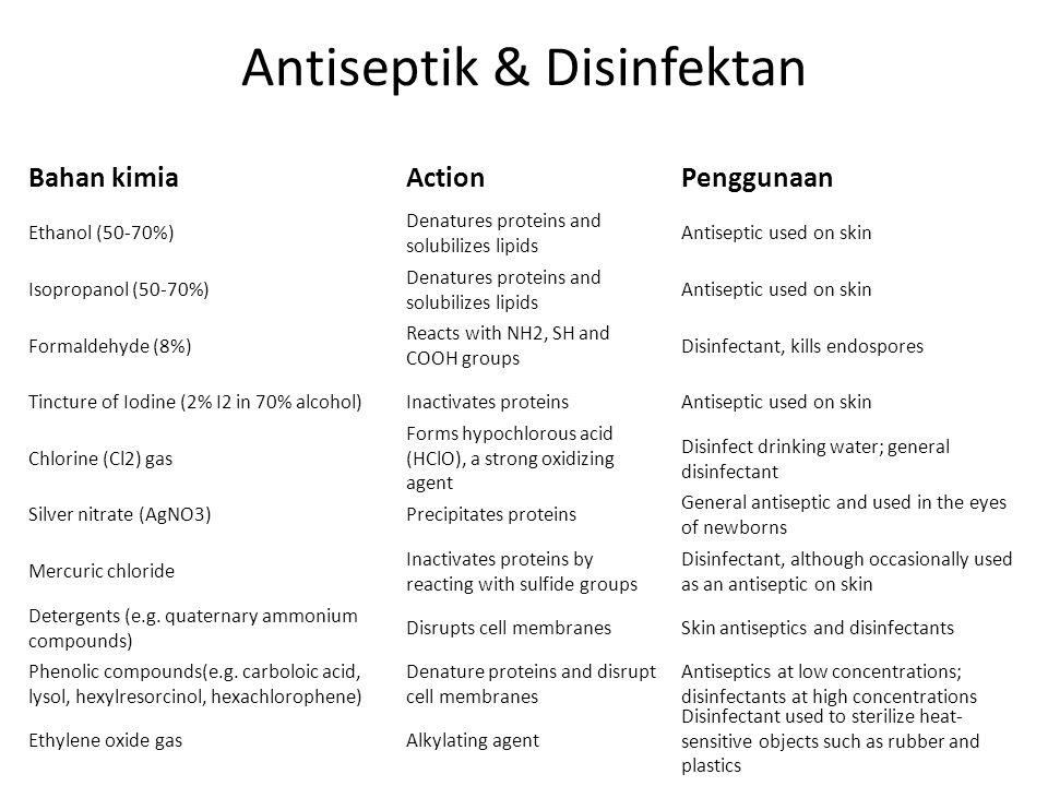 Antiseptik & Disinfektan