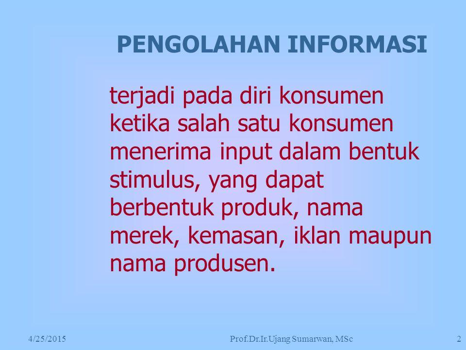 Prof.Dr.Ir.Ujang Sumarwan, MSc